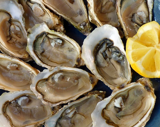 Arrive Hungry to the Chesapeake Oyster, Wine, & Beer Festival on Sept. 21
